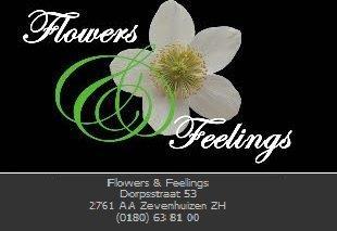 Flowers & Feelings